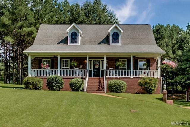 20513 Cathedral Lane, MCCALLA, AL 35111 (MLS #128107) :: The Gray Group at Keller Williams Realty Tuscaloosa