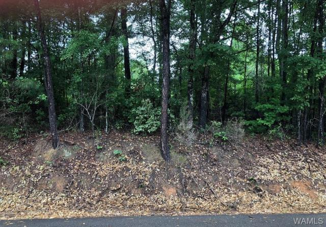 5A Cranberry Drive, NORTHPORT, AL 35475 (MLS #128131) :: Williamson Realty Group