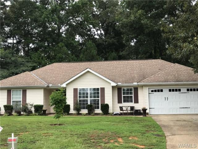 7920 Stormy Lane, NORTHPORT, AL 35473 (MLS #128143) :: Williamson Realty Group