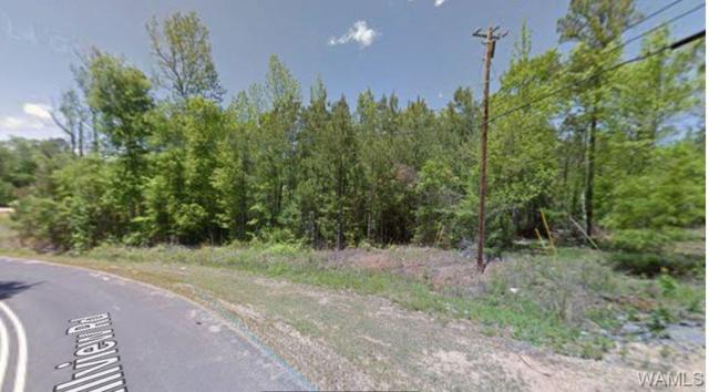 00 Hillview Road, COKER, AL 35452 (MLS #128144) :: The Advantage Realty Group