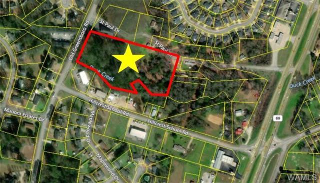 000 Old Greensboro Road, TUSCALOOSA, AL 35405 (MLS #128158) :: The Gray Group at Keller Williams Realty Tuscaloosa