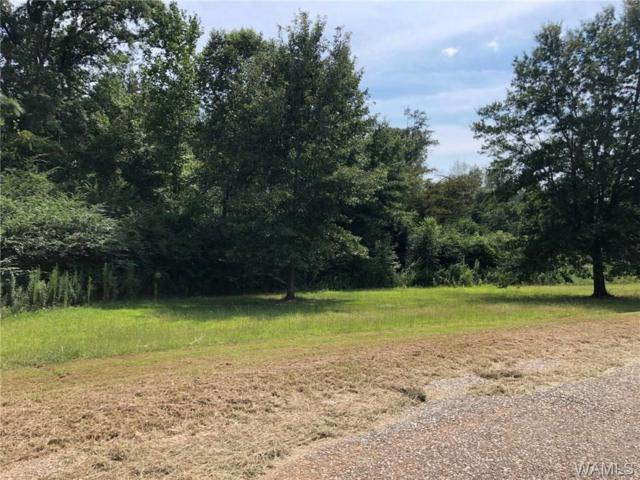 000 Massey Loop Road, MOUNDVILLE, AL 35474 (MLS #128269) :: The Advantage Realty Group