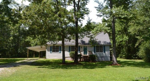 15171 Hillview Road, COKER, AL 35452 (MLS #128319) :: Williamson Realty Group