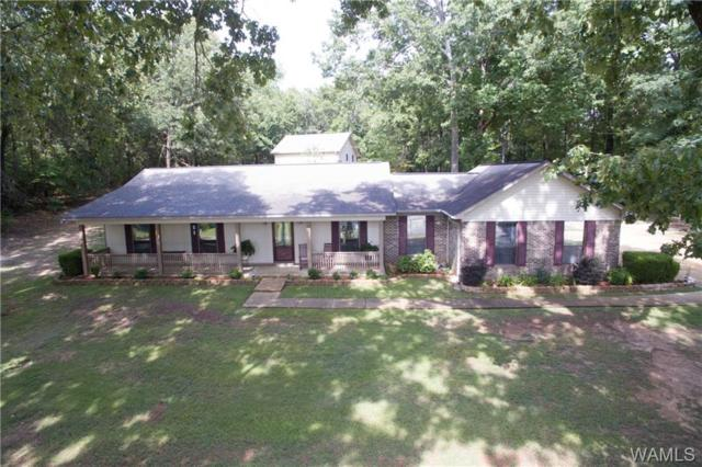 9232 Wire Road, COTTONDALE, AL 35453 (MLS #128353) :: The Advantage Realty Group