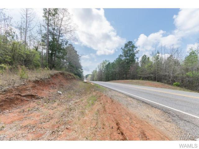 0 Highway 69 S, GREENSBORO, AL 36744 (MLS #128540) :: The Gray Group at Keller Williams Realty Tuscaloosa