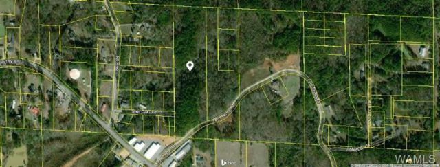 0 Tom Taylor Road, TUSCALOOSA, AL 35473 (MLS #128551) :: The Advantage Realty Group
