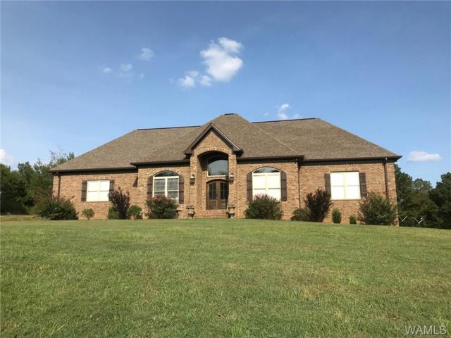 38888 Highway 69 S, MOUNDVILLE, AL 35474 (MLS #128563) :: The Advantage Realty Group