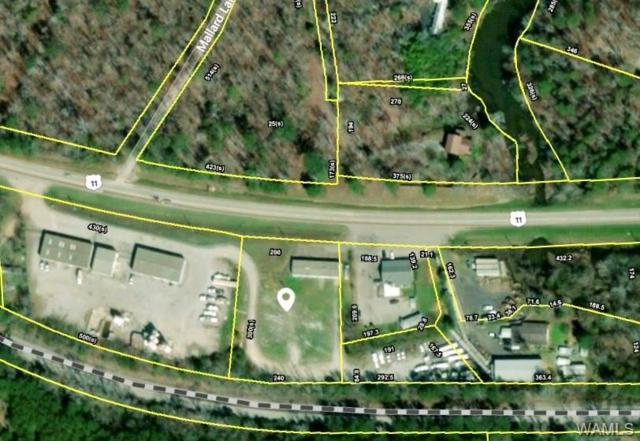 13691 Highway 11 N, COTTONDALE, AL 35453 (MLS #128589) :: Williamson Realty Group