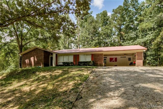 13225 Tom Williams Road, COKER, AL 35452 (MLS #128607) :: The Advantage Realty Group