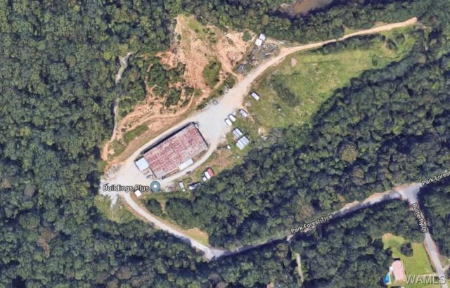 11662 Park Forest Trace, DUNCANVILLE, AL 35456 (MLS #128620) :: Wes York Team