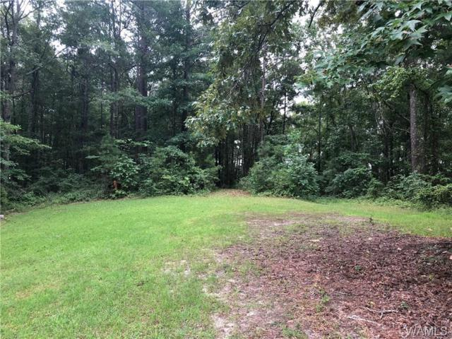 0 Medders Road, VANCE, AL 35490 (MLS #128705) :: Williamson Realty Group