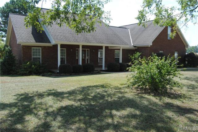 650 Co Rd 112, FAYETTE, AL 35555 (MLS #128738) :: The Advantage Realty Group