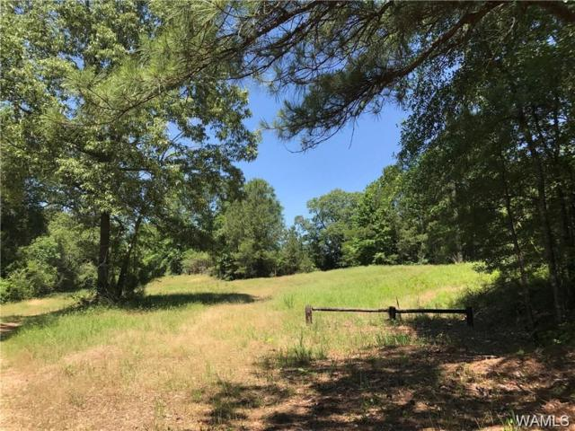 02 Lee Bonner Road, NORTHPORT, AL 35457 (MLS #128778) :: The Advantage Realty Group