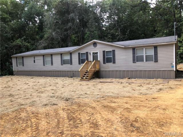 13055 Hummingbird Corner, DUNCANVILLE, AL 35456 (MLS #128782) :: The Gray Group at Keller Williams Realty Tuscaloosa