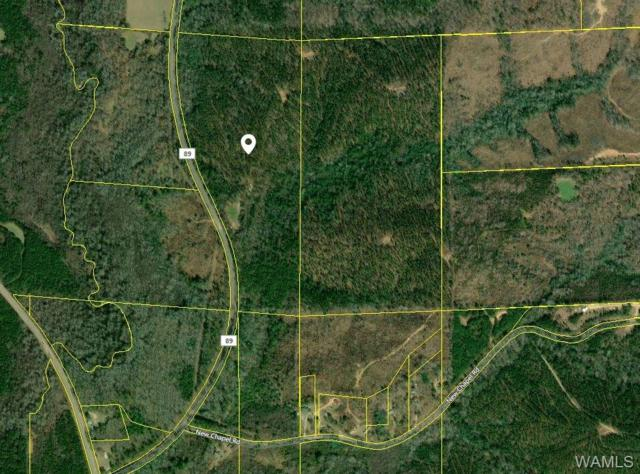 000 County Rd 89, FAYETTE, AL 35555 (MLS #129870) :: The Advantage Realty Group