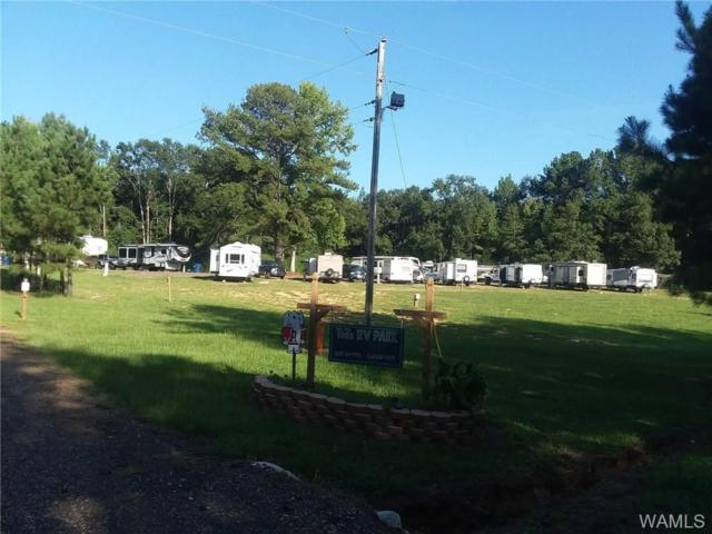 2550 County Road 7, OTHER, AL 36912 (MLS #129879) :: The Advantage Realty Group