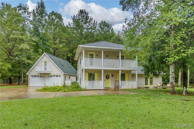 16787 N River Shores Road, NORTHPORT, AL 35475 (MLS #129900) :: The Advantage Realty Group