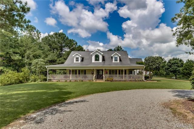 11125 Big Hurricane Spur, BROOKWOOD, AL 35444 (MLS #130032) :: The Gray Group at Keller Williams Realty Tuscaloosa