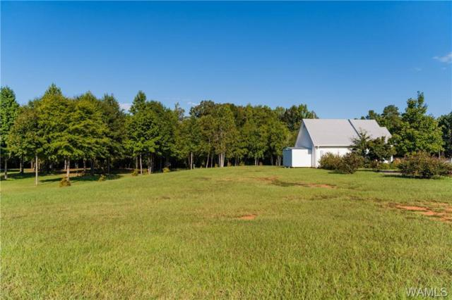16325 Highway 11 Highway N, VANCE, AL 35490 (MLS #130069) :: Williamson Realty Group