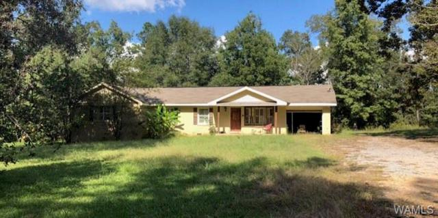 15337 Strawberry Lane, NORTHPORT, AL 35475 (MLS #130271) :: The Gray Group at Keller Williams Realty Tuscaloosa