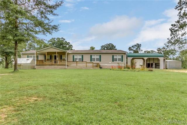 1701 Wesley Chapel Rd Road, KENNEDY, AL 35574 (MLS #130281) :: The Gray Group at Keller Williams Realty Tuscaloosa