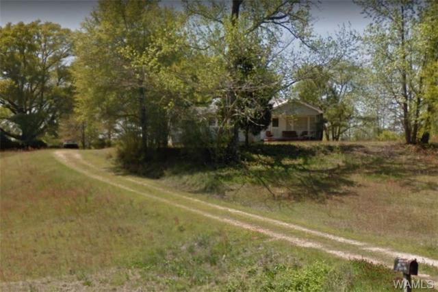 19920 Highway 43 N, NORTHPORT, AL 35475 (MLS #130355) :: The Gray Group at Keller Williams Realty Tuscaloosa
