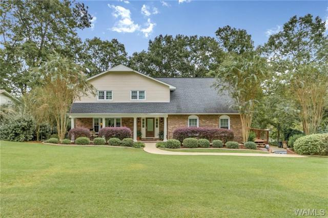 11051 Carolwood Lakeview Drive, NORTHPORT, AL 35475 (MLS #130368) :: The Alice Maxwell Team