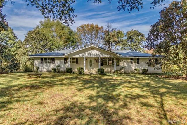 15925 Jackson Johnson Road, BUHL, AL 35446 (MLS #130515) :: The Advantage Realty Group