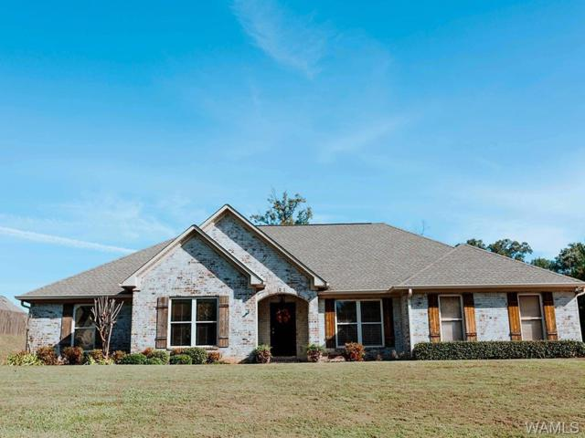 12991 Zach Drive, NORTHPORT, AL 35475 (MLS #130561) :: The Advantage Realty Group