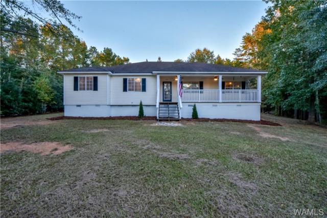 16843 Fulmar Lane, NORTHPORT, AL 35475 (MLS #130576) :: The Gray Group at Keller Williams Realty Tuscaloosa