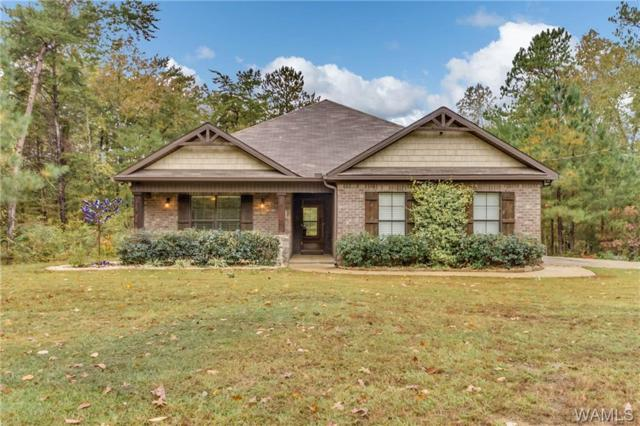 11824 Holt Lock And Dam Road, COTTONDALE, AL 35453 (MLS #130624) :: The Gray Group at Keller Williams Realty Tuscaloosa