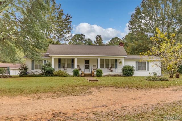 1401 Hurricane Road, COTTONDALE, AL 35453 (MLS #130655) :: The Gray Group at Keller Williams Realty Tuscaloosa