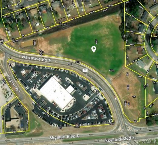 3905 Hargrove Road E, TUSCALOOSA, AL 35405 (MLS #130713) :: The Advantage Realty Group