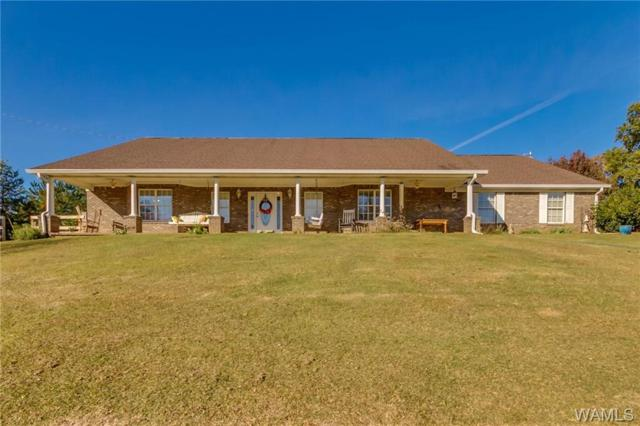 10952 Sexton Bend Road, TUSCALOOSA, AL 35406 (MLS #130770) :: The Advantage Realty Group