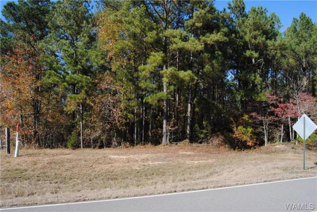 000 Co Rd 49, VERNON, AL 35592 (MLS #130776) :: The K|W Group