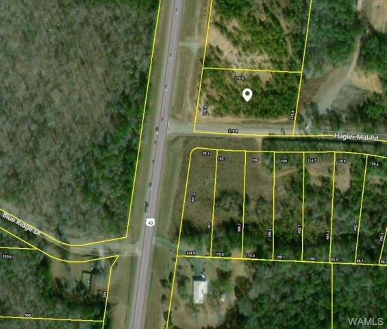 16005 Hwy 43 N, NORTHPORT, AL 35475 (MLS #130780) :: The Advantage Realty Group