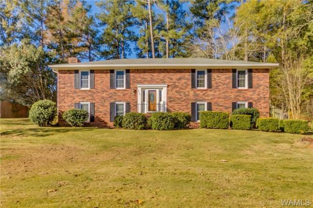 3706 Hunter Creek Road, NORTHPORT, AL 35473 (MLS #130796) :: The Alice Maxwell Team