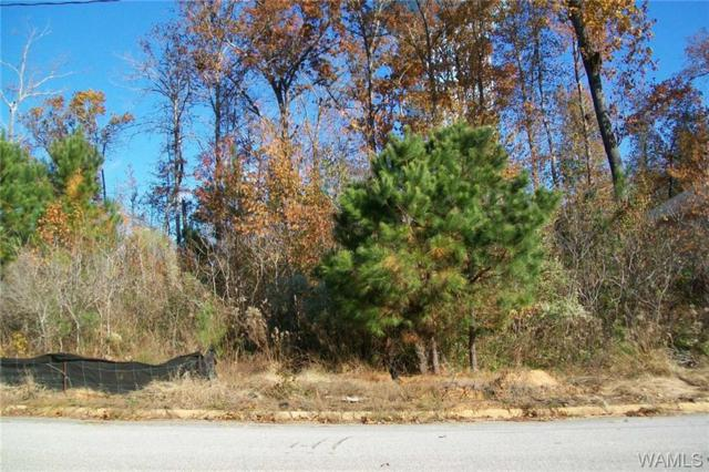 11933 Hidden Forest Ln, NORTHPORT, AL 35475 (MLS #130804) :: The Advantage Realty Group