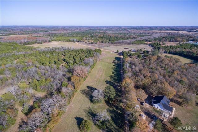 7324 Highway 61, Newbern, AL 36765 (MLS #130869) :: The Advantage Realty Group