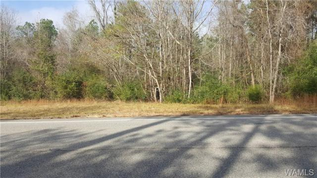 14701 Hwy 11 South, FOSTERS, AL 35405 (MLS #130980) :: The Advantage Realty Group