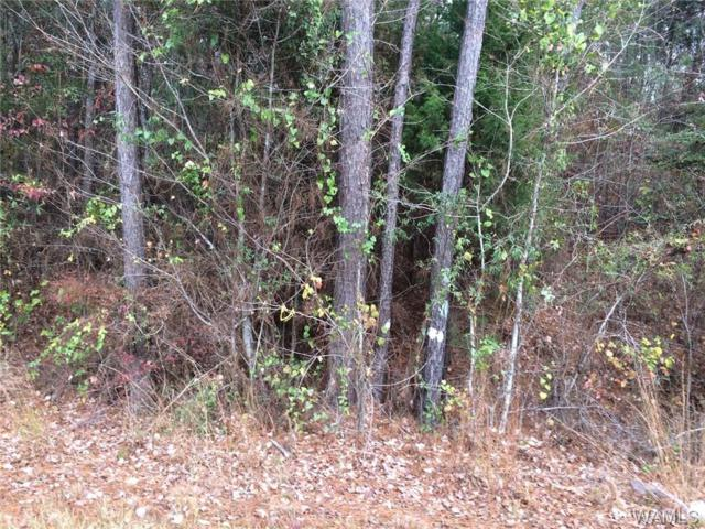 00 County Rd 208, EUTAW, AL 35426 (MLS #130991) :: The Advantage Realty Group