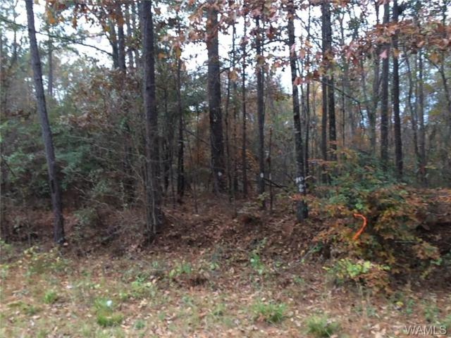 0 County Rd 208, EUTAW, AL 35426 (MLS #130993) :: The Advantage Realty Group