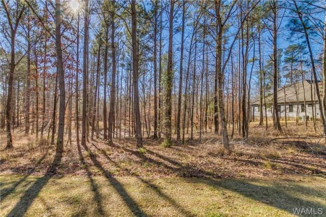 10660 Legacy Point Drive, NORTHPORT, AL 35475 (MLS #131165) :: The Alice Maxwell Team
