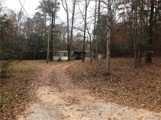 12989 Raintree Cir, DUNCANVILLE, AL 35456 (MLS #131210) :: The Gray Group at Keller Williams Realty Tuscaloosa