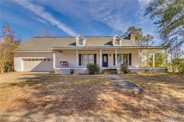 14916 Brown Road, NORTHPORT, AL 35475 (MLS #131244) :: The Advantage Realty Group