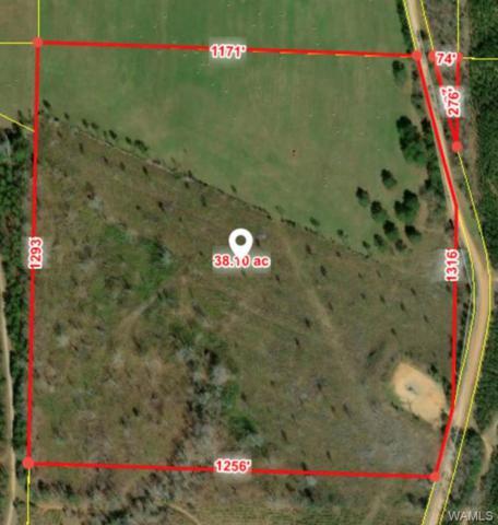 13570 Lake Harris Road, TUSCALOOSA, AL 35406 (MLS #131276) :: The Gray Group at Keller Williams Realty Tuscaloosa