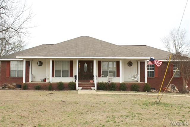 10421 Will Walker Lane, VANCE, AL 35490 (MLS #131281) :: The Gray Group at Keller Williams Realty Tuscaloosa