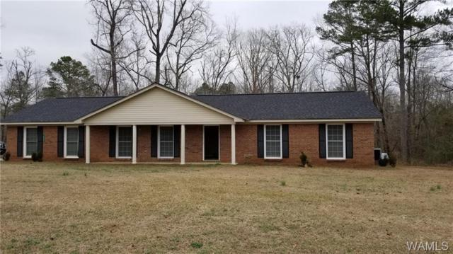 16151 Gainsville Road, RALPH, AL 35480 (MLS #131322) :: The Gray Group at Keller Williams Realty Tuscaloosa