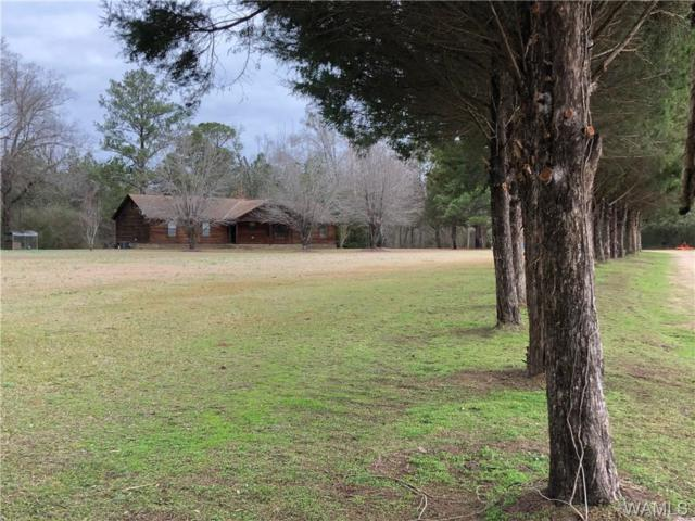 2614 County Road 156, RALPH, AL 35480 (MLS #131429) :: The Advantage Realty Group
