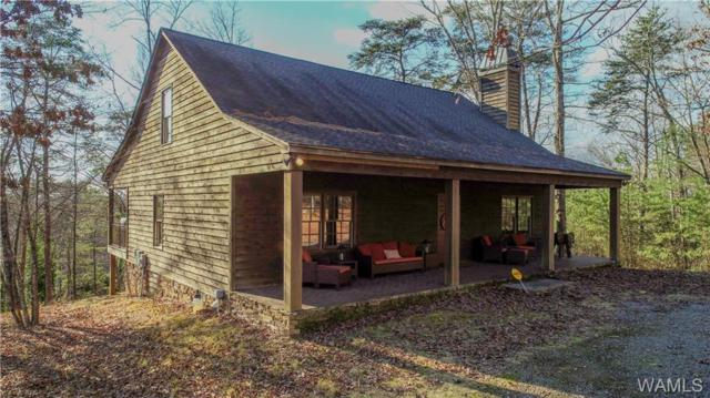 12087 Country Club Drive, NORTHPORT, AL 35475 (MLS #131515) :: The Alice Maxwell Team